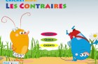 Cricket Kids Contraires - Accueil
